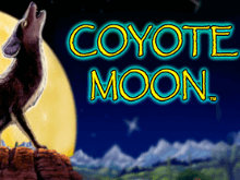 Играть в Coyote Moon онлайн на зеркале с ГСЧ