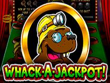 Играть Whack A Jackpot онлайн на виртуальном сайте